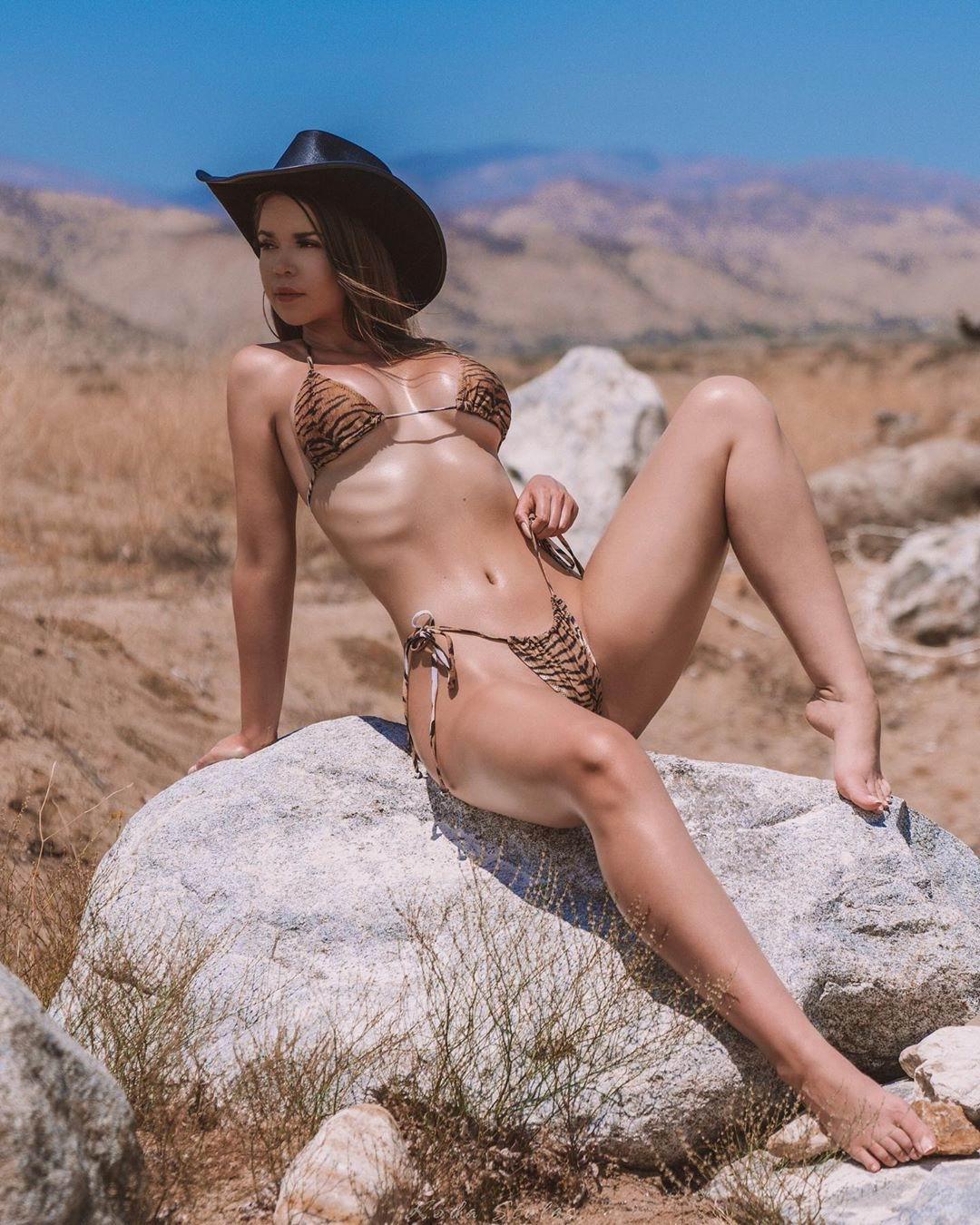 Модель Джесса